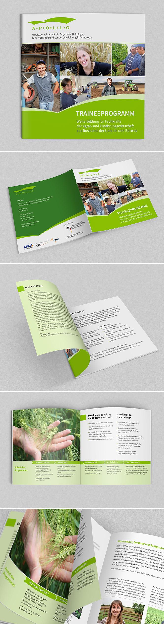 Grafikdesign Programm-Broschüre für Apollo Verein